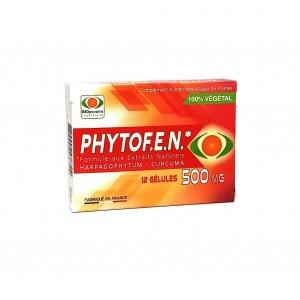 Phytofen 500 mg - 12 Gélules