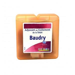 Baudry pâte à sucer - Boiron