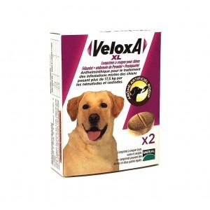 Veloxa Vermifuge Chien XL -...