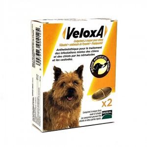 Veloxa Vermifuge Chiens - 2...
